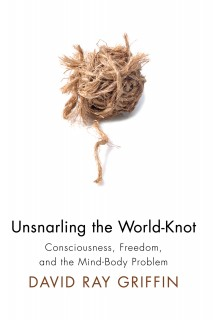 Unsnarling the World-Knot