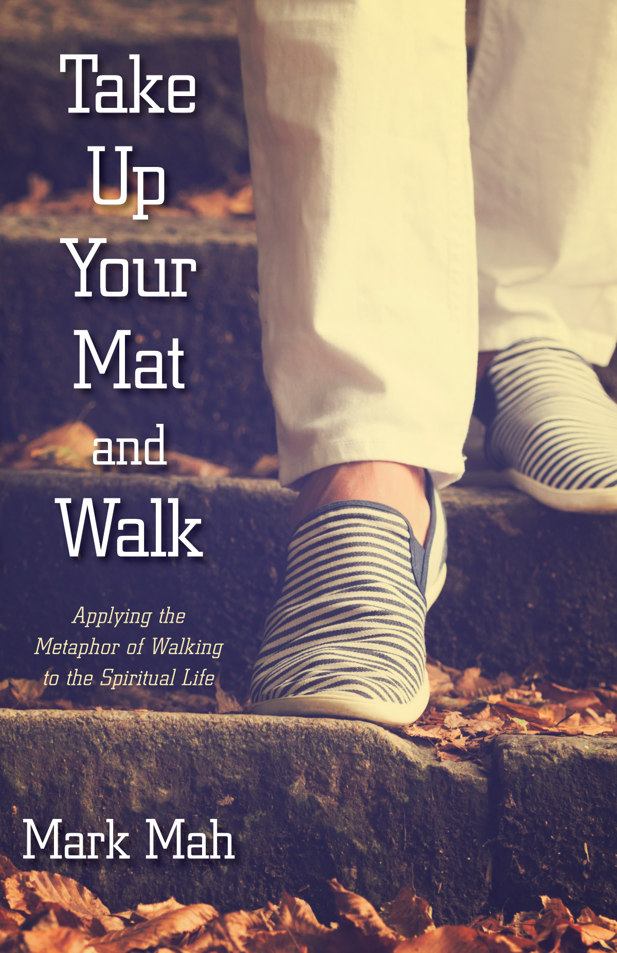 Take Up Your Mat And Walk Morning Star Publishing